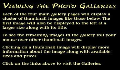 How to view the photo galleries.