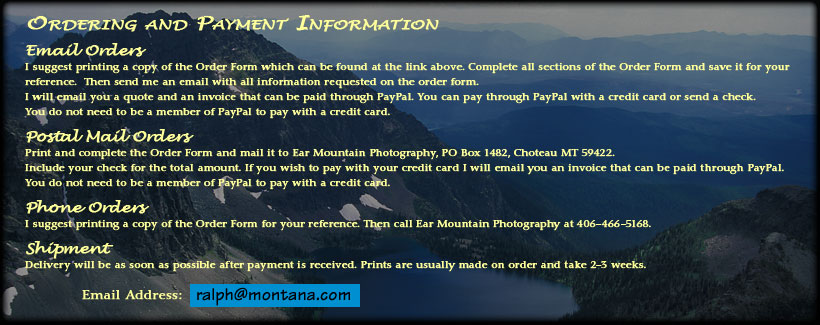 Odering and payment information