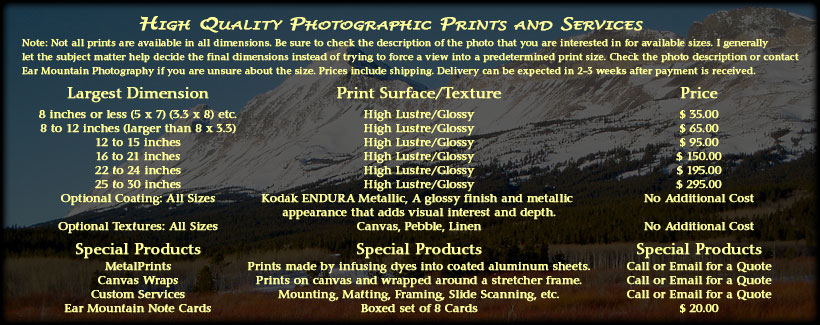 Description of Fine Art Prints